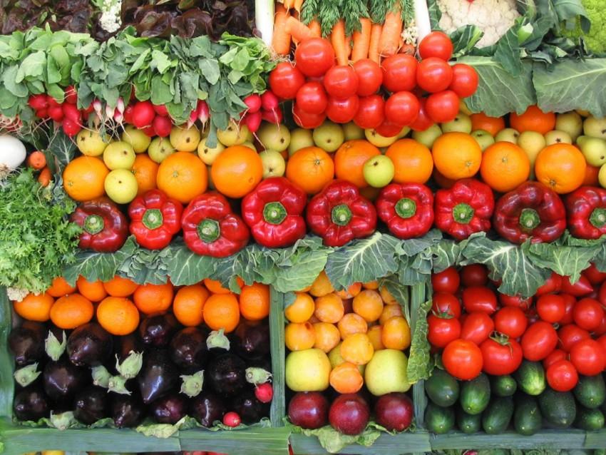 Выяснилось, какая область Узбекистана экспортировала наибольшее количество овощей и фруктов