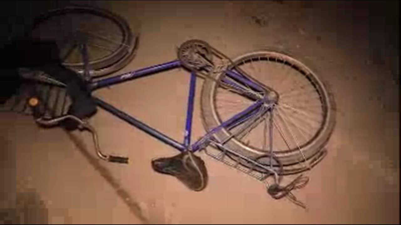 В Навоийской области Cobalt сбил велосипедиста — видео
