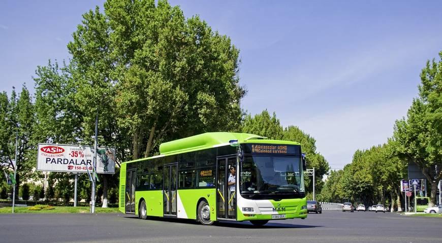 В Ташкенте сеть маршрутов общественного транспорта поделят на категории