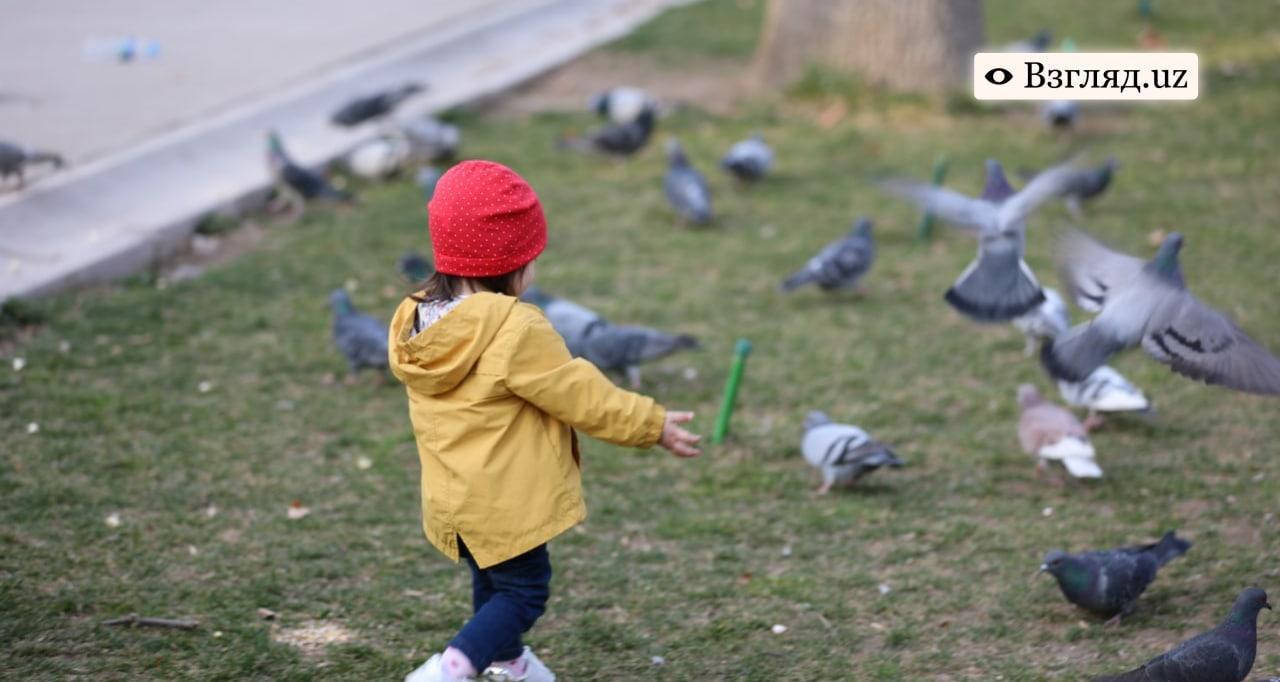 Узбекистан в этом году примет закон о детском омбудсмане