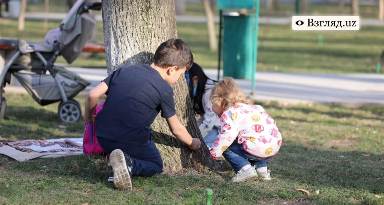 Стало известно среднее количество детей в семьях Узбекистана
