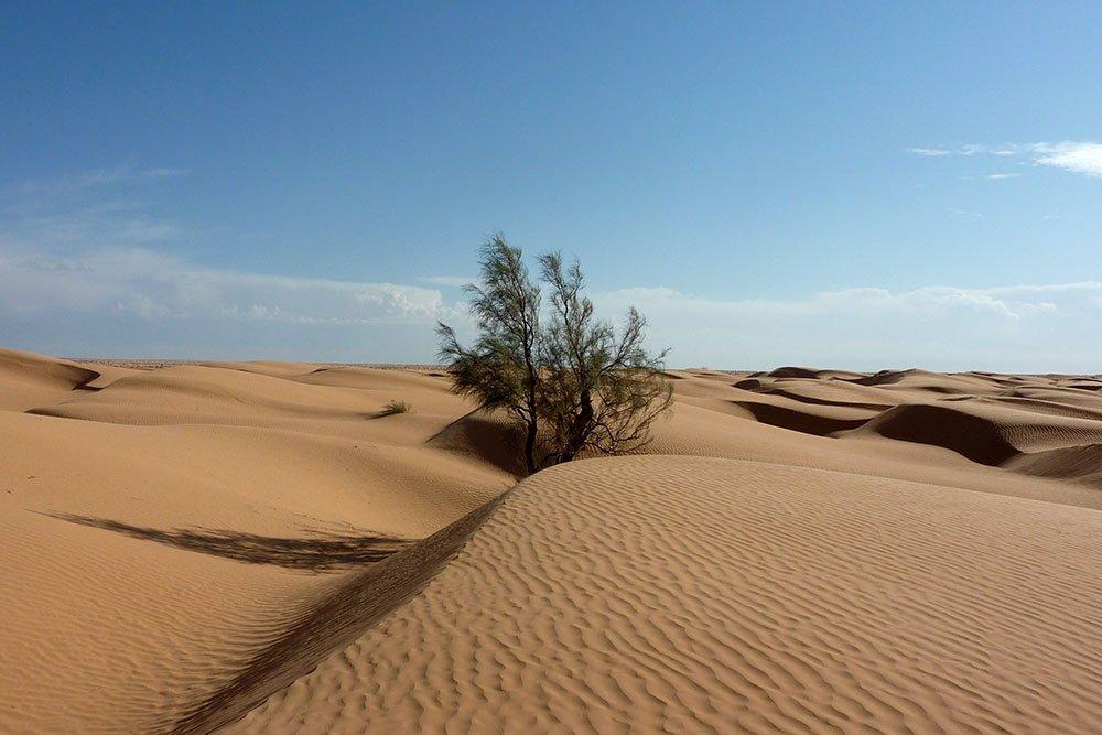 Обнаружен осколок древней планеты в пустыне Сахара