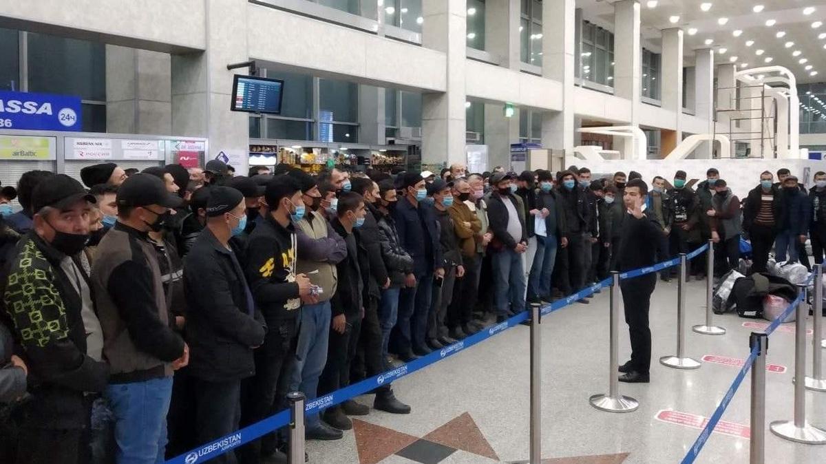 На заработки в Амурскую область отправились 197 узбекистанцев