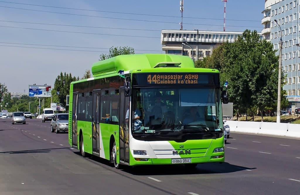 В Ташкенте на одной из улиц могут создать отдельную полосу для общественного транспорта