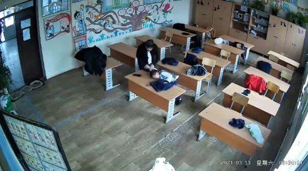 Стали известны подробности видео с избиением ученика в Андижанской области