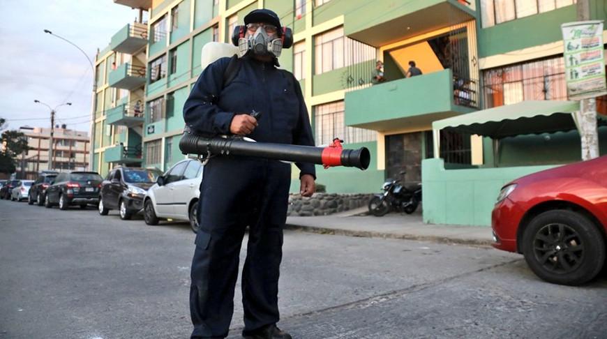 В Перу распространилась лихорадка денге