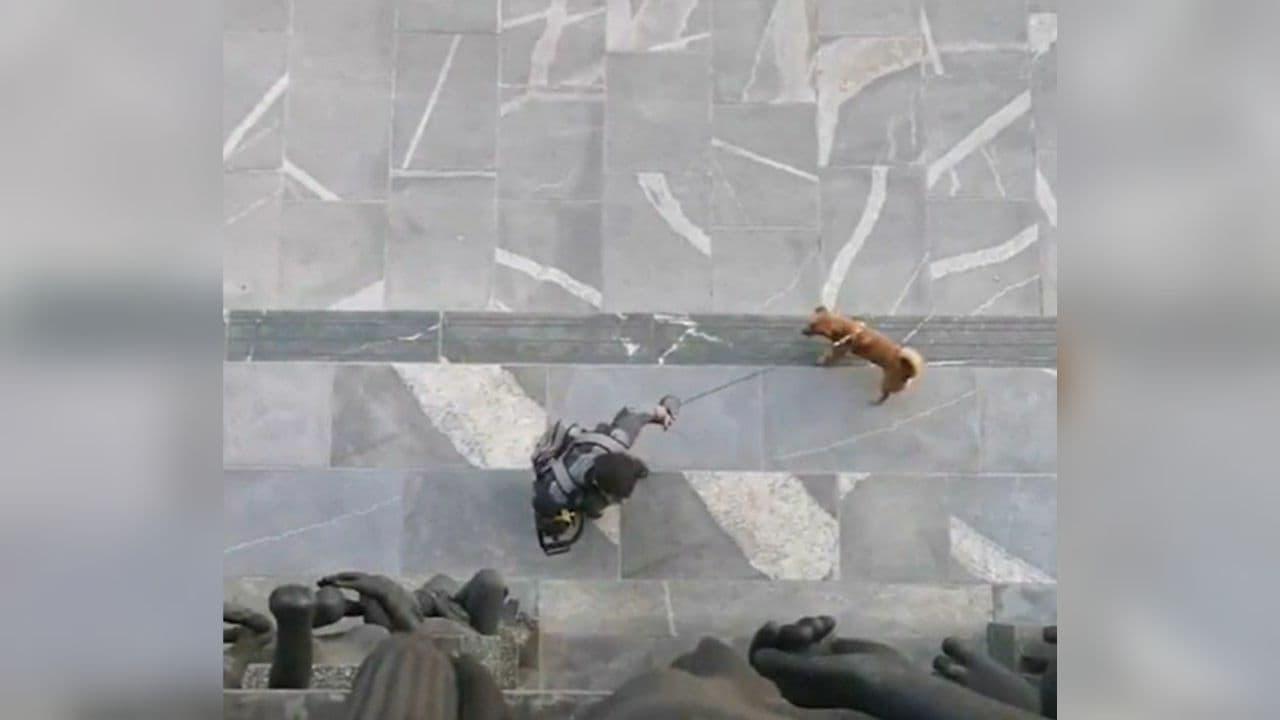 Мужчина с бензопилой пытался проникнуть в парламент Словении — видео