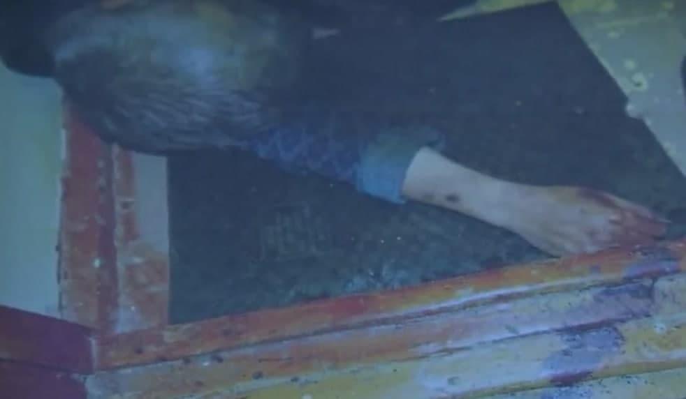 Гражданин осужден за убийство брата в целях самообороны в Ташкенте — видео