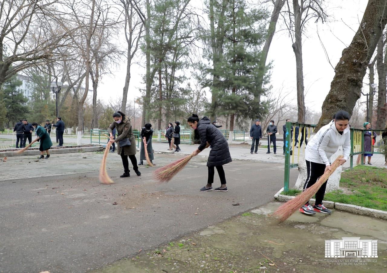 Веники, лопаты и покраска деревьев: как в Узбекистане проходит хашар – фото