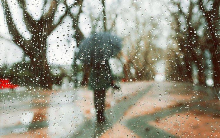В Узбекистане ожидается дождь