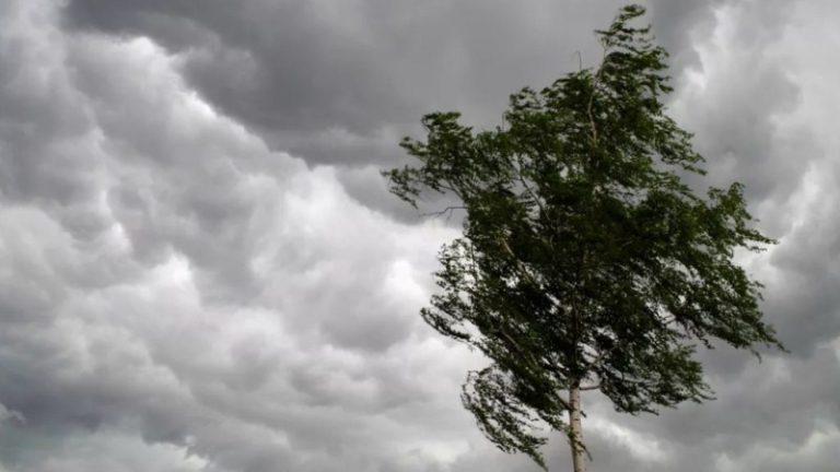 В Узбекистане ожидается усиление ветра