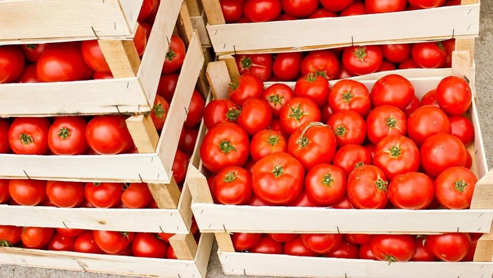 Узбекистан ужесточит контроль качества экспортируемых в Россию помидоров