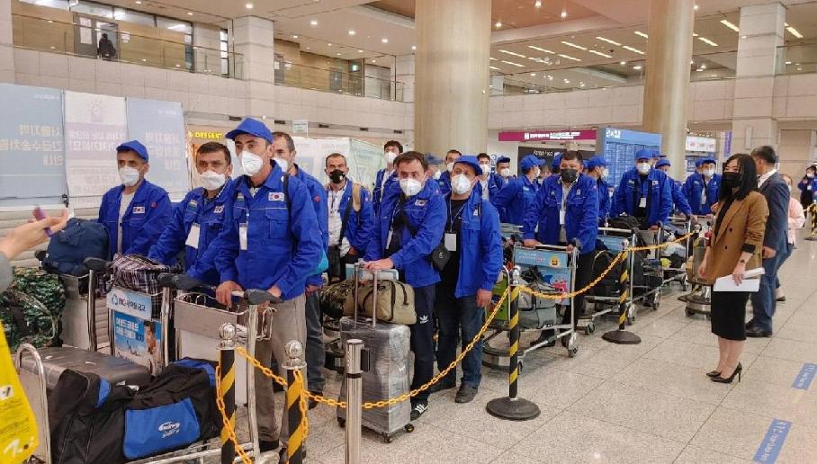 В Южную Корею впервые с начала пандемии прибыли мигранты из Узбекистана