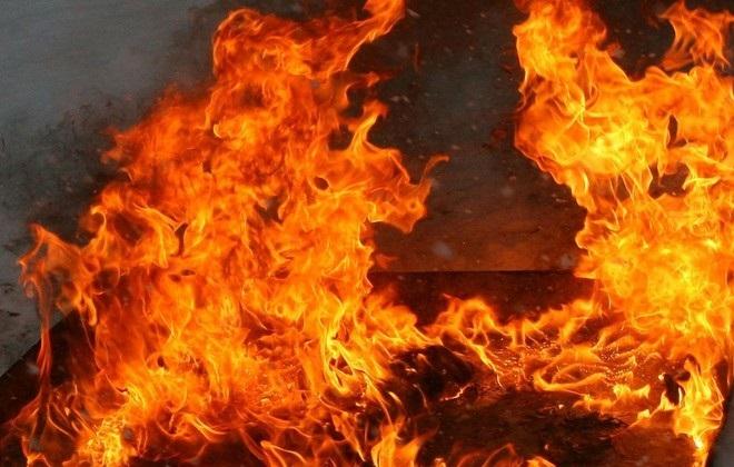 В Каракалпакстане 440 голов скота заживо сгорели