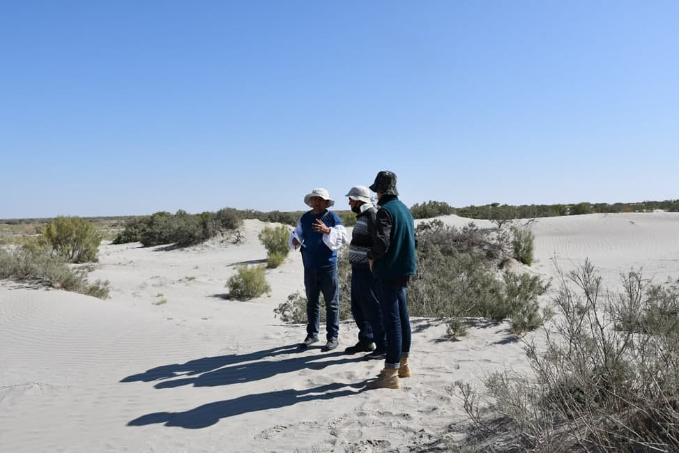 Более 2 миллионов гектаров высохшего дна Аральского моря были оцифрованы и разделены на картографические единицы