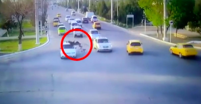 В Навои велосипедист проехал на красный свет и врезался в автомобиль Nexia — видео